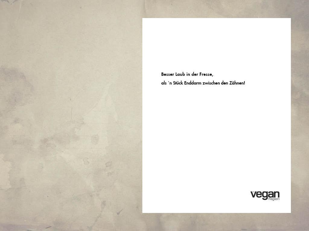 Werbeanzeige Vegan Magazin: Text